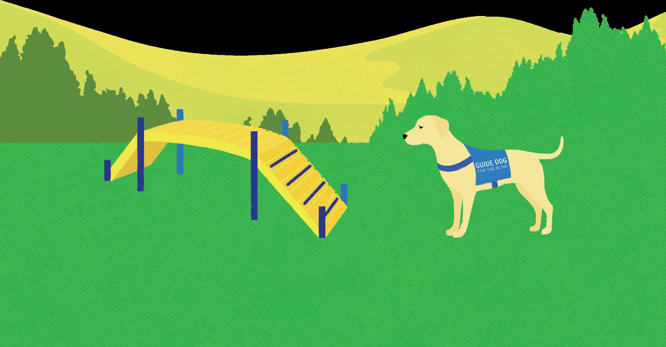 dog bridge image